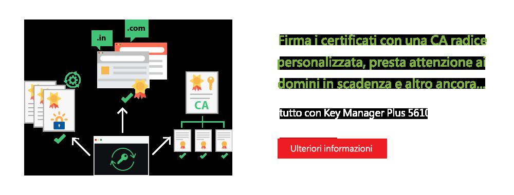 Firma i certificati con una CA radice personalizzata, presta attenzione ai domini in scadenza e altro ancora...
